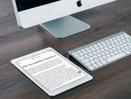 How to Make Your Website PDFs Accessible