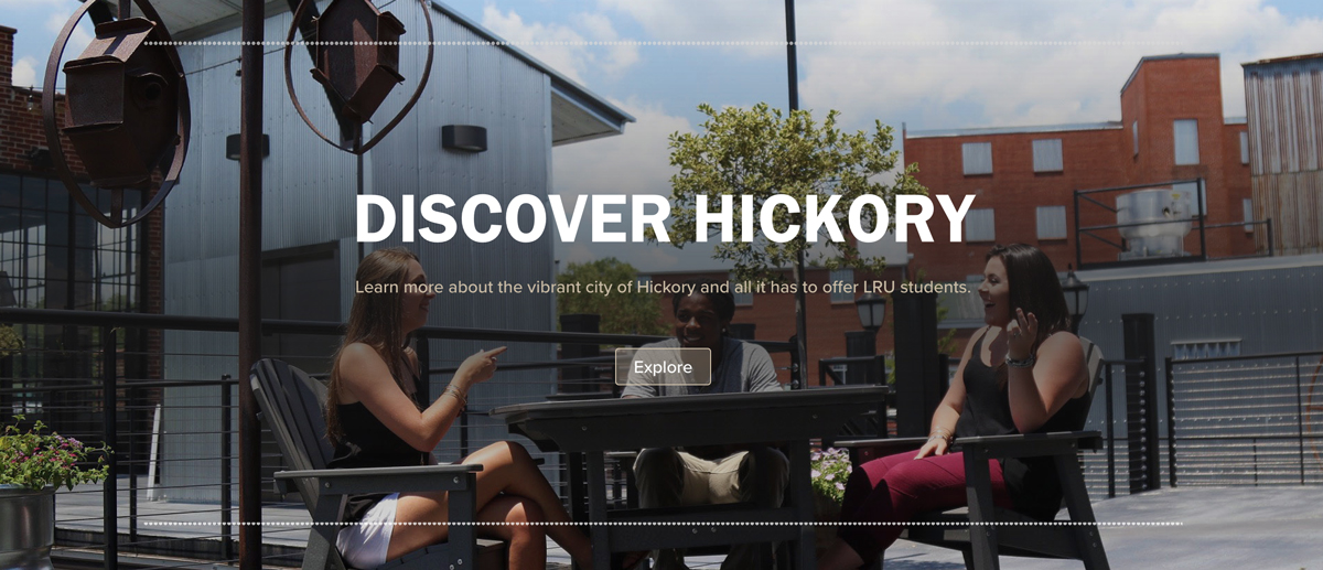 Discover Hickory Panel