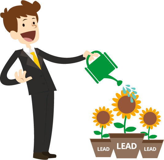 Lead nurturing strategies